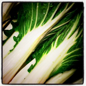 Bok Choy in the supermarket