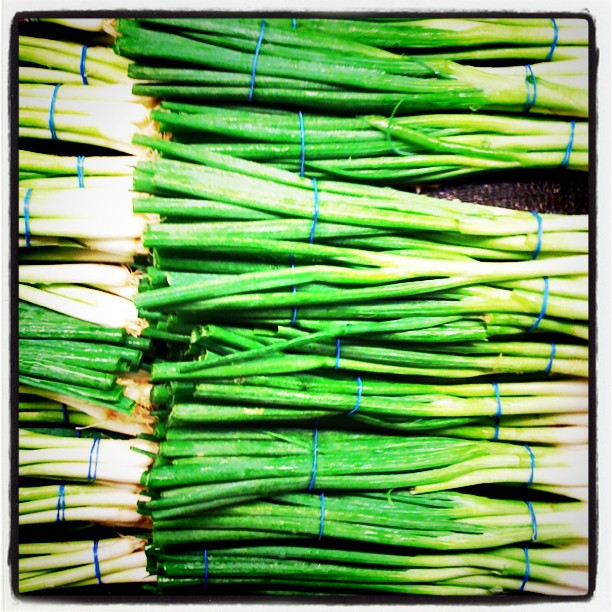 Green Onions Stacked in the Supermarket