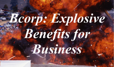 B Corp: Benefit Corporation, Doing Good in the World